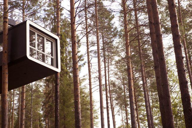 Treehotel - Cabin